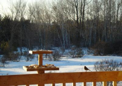 Back deck winter scene